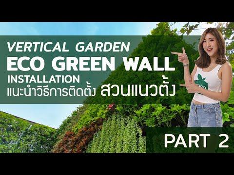 แนะนำการติดตั้งสวนแนวตั้ง ECO GREEN WALL