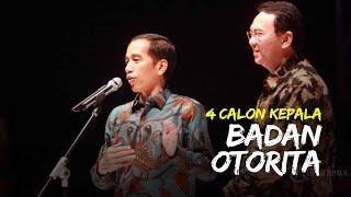 Jokowi Ungkap 4 Nama Calon Kepala Badan Otorita Ibu Kota Baru, Nama Ahok Jadi Sorotan