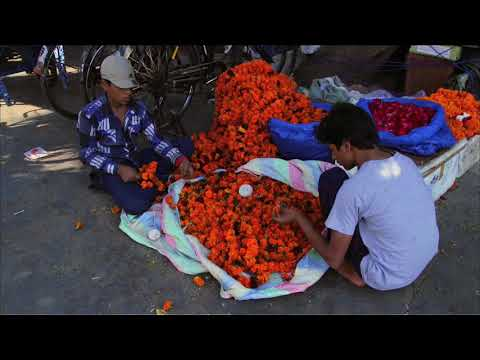 The Grassroots Tour - Mughal Delhi