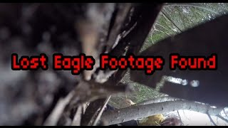 Reaction after finding lost footage: 2m Wedge-Tailed Eagle takes down Drone.