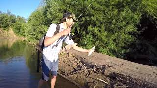 Краснодарский край рыбалка река пшиш