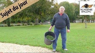 Sujet du jour 16 : Qu' est-ce qu'on plante au château ? - Académie Balzac