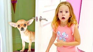 Nastya perdió a su perro mascota, historia de mascotas paraniños