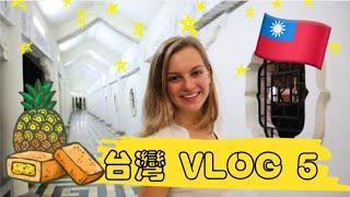 台灣VLOG-5🇹🇼【美國女孩在台灣的日常】嘗試台灣最有名的鳳梨酥、逛師大夜市~台灣超級棒❤️(全部說中文)