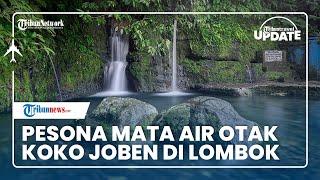 Mata Air Otak Koko Joben di Lombok Dipercaya Bisa Sembuhkan Berbagai Jenis Penyakit, Bernarkah?