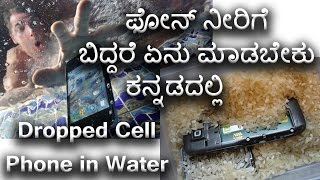 Dropped Cell Phone in Water| kannada video