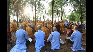 Phật Pháp Vấn Đáp Kỳ 14 | Thầy Thích Trúc Thái Minh