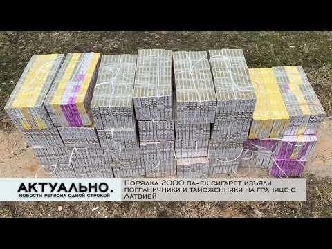 Актуально Псков / 06.04.2021