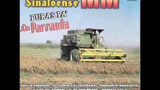 Banda MM El Pajaro Prieto