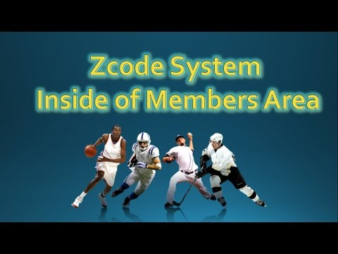 How Does ZCode System Work