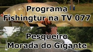 Programa Fishingtur na TV 077 - Pesqueiro Morada do Gigante