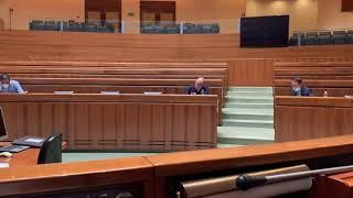 Insularità. L'intervento in Consiglio regionale di Tommaso Edoardo Frosini