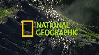 Дагестанец стал победителем конкурса National Geographic