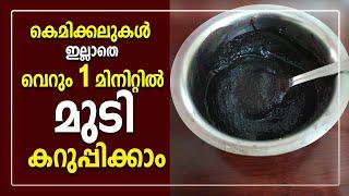 കെമിക്കലുകൾ ഇല്ലാതെ വെറും 1 മിനിറ്റിൽ മുടി കറുപ്പിക്കാം | 100% Natural Hair Dye Malayalam | Hair Dye