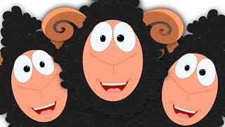 Baa Baa Black Sheep | Nursery Rhymes For Kids | Preschool Rhyme