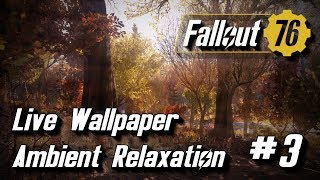 Fallout 76 Animated Desktop Relaxation Video Loop number 3