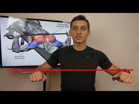 Ćwiczenia dla wszystkich grup mięśni w kształtowaniu