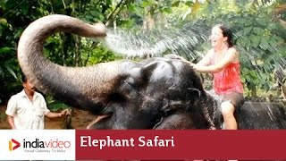 Elephant Camp and Elephant Safari at Periyar National Park in Thekkady
