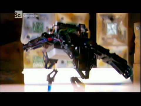 Угроза искусственного интеллекта и слияние с машинами