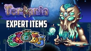 Terraria 1.3 Expert Mode Treasure Bags | Top 5 Best Expert Mode Items | PC | XBOX1 | PS4