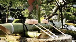 Японская музыка в стиле дзен в японском саду медитации, сна, изучая со звуками ае