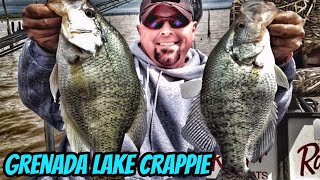 Mississippi Monster Crappie