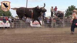 !!Mira que torazo El Taladro!! su Debud de Seleccion Michoacana en USA. Colusa CA.