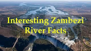 Interesting Zambezi River Facts