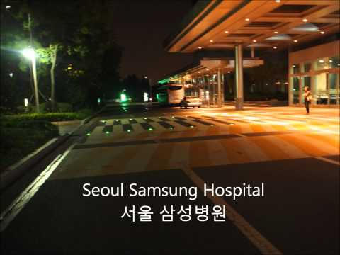 GNI LED Solar Road Marker - Solar Cats Eyes Appication Site (표지병 샛별 적용구간)
