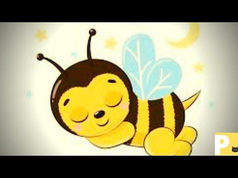 Som de abelha para dormir - bee sounds for sleeping - Wup8 - meia hora de zumbido de abelha