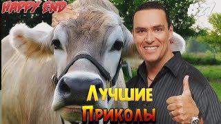 Лучшие Приколы  2018  |  Пейте Дети Молоко #27