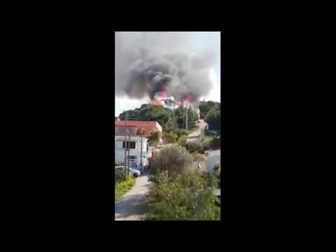 41bb00132a1 Ειδήσεις - Νέα τραγωδία: Νεκρός από πυρκαγιά... | Palo.gr