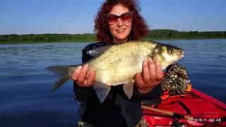 Плещеево озеро рыбалка с берега