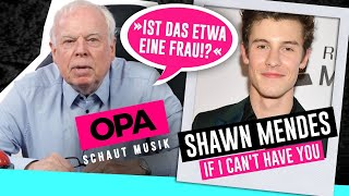 Opa Schaut Musik   Shawn Mendes (If I Can't Have You)