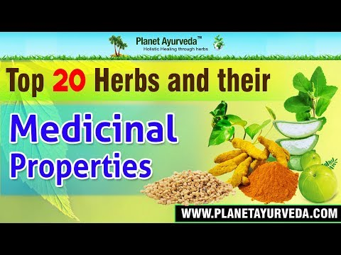 Video Top 20 Herbs & their Medicinal Properties - Health Benefits
