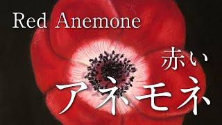 赤いアネモネ【サンプル制作】 (30cm×30cm)