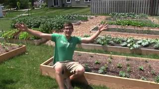 The Internet Lost It's Mind When I Placed Raised Beds Directly on Grass
