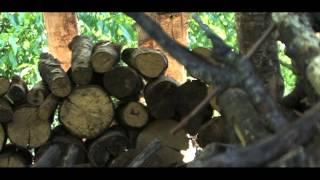 Video del alojamiento Casa Senderuela