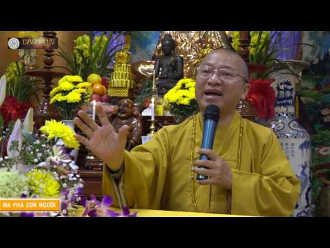 Vấn đáp: Ma phá con người, cầu siêu và tuần thất, cầu siêu cho cha mẹ, tự tin và kiêu mạn, chứng thánh quả, Phật có tóc