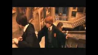 Ja jsem gay - harry potter.wmv