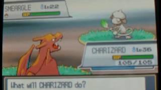 Smeargle  - (Pokémon) - How to Catch Smeargle and Natu - Pokemon Heart Gold and Soul Silver