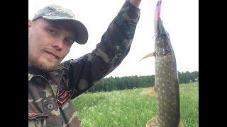 Рыбалка на южных озерах в чеховском районе