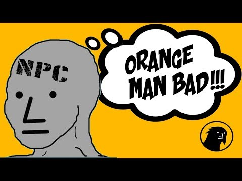 WHY the NPC Meme CRASHED TWITTER #OrangeManBad