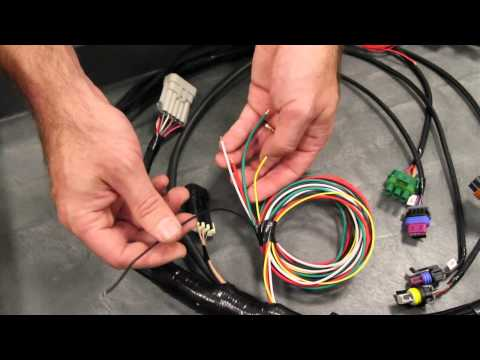 Holley EFI 558-406 Dominator EFI GM Drive-By-Wire Harness