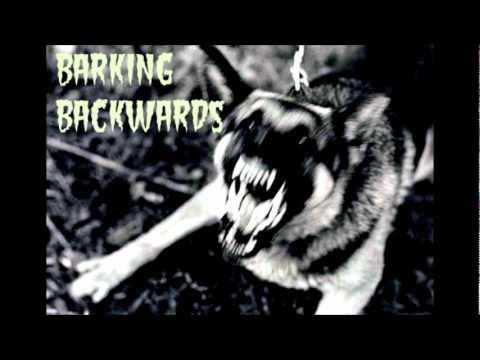 BARKING BACKWARDS