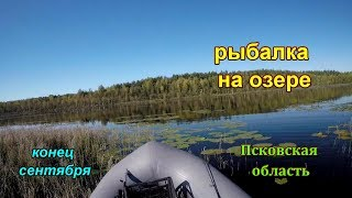 Озеро ясское псковской области рыбалка на карте