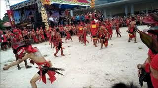 AKSI MENGERIKAN Tariu Borneo