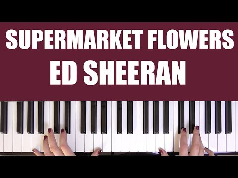 HOW TO PLAY: SUPERMARKET FLOWERS - ED SHEERAN - MuseChick