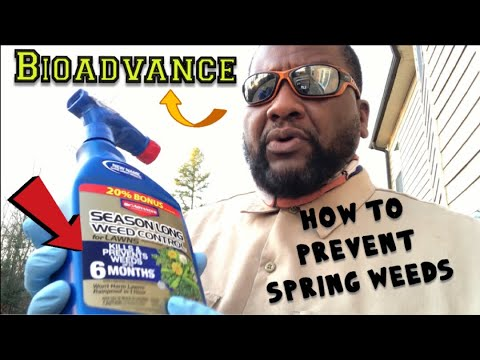How to prevent Spring weeds  and how to apply Bioadvance Season Long Weed Control.