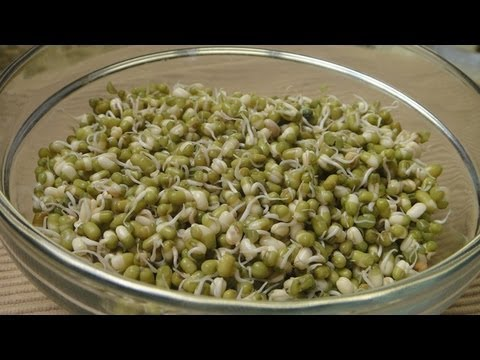 Video How to make Sprouts
